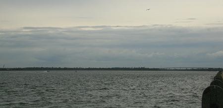 Charleston Bay 1