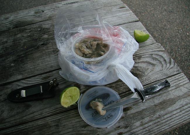 Oyster breakfast