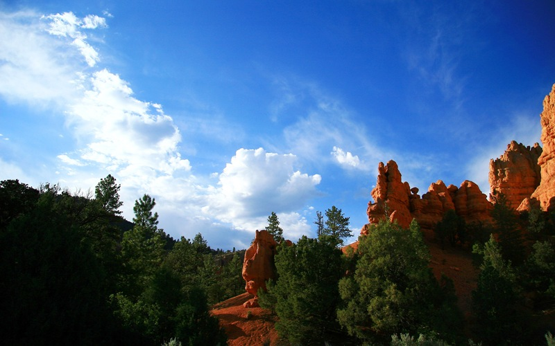 red canyon 5