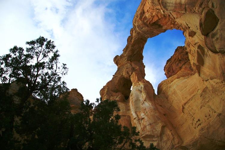 arch 6