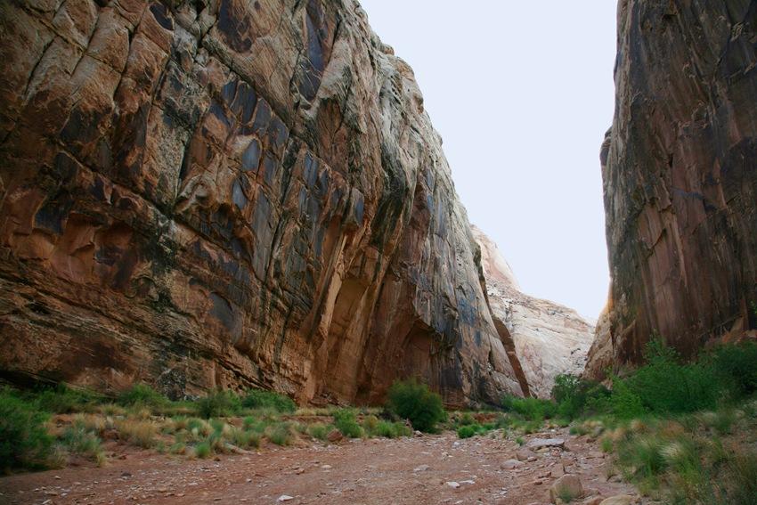 Gorge 4 a