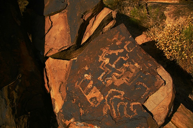 petroglyph d