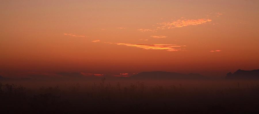fog a