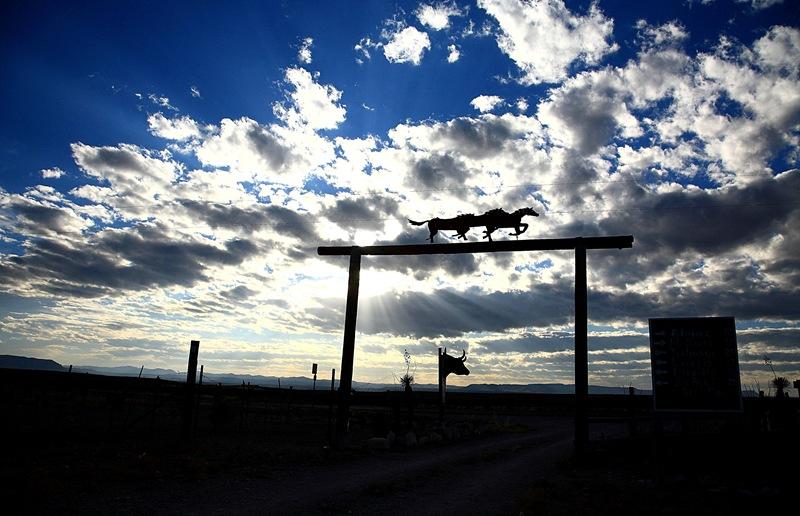 cowhead ranch g