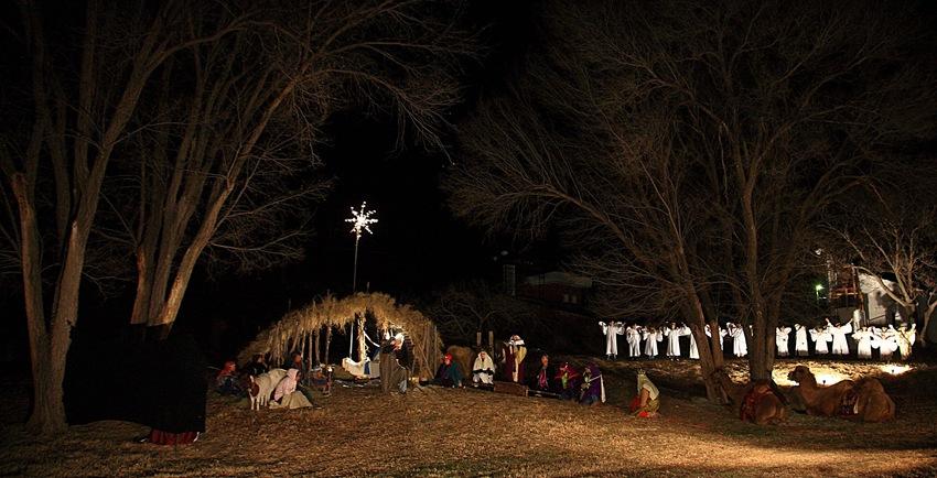 Nativity f