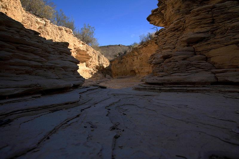 mini canyon c