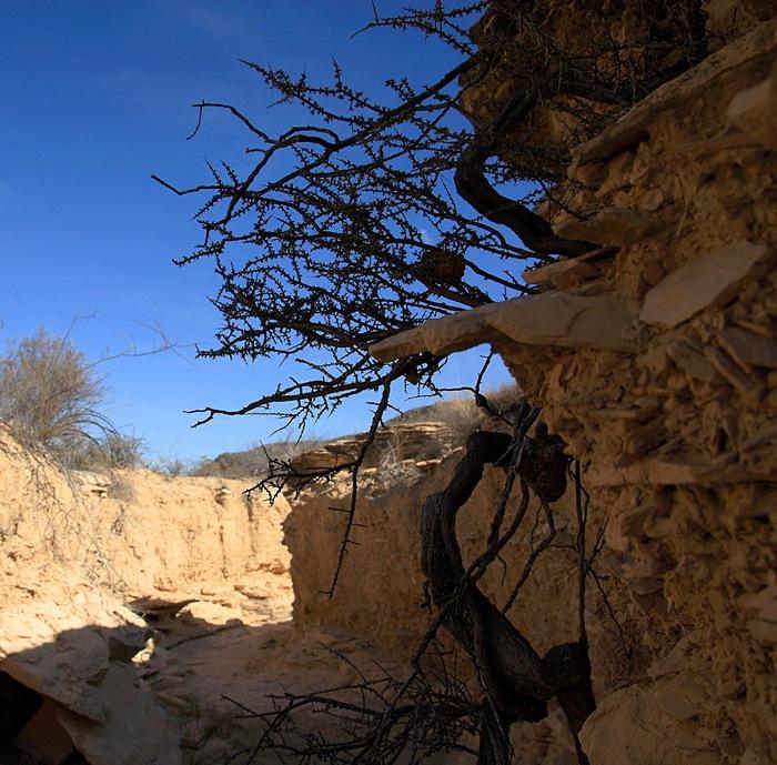 mini canyon e