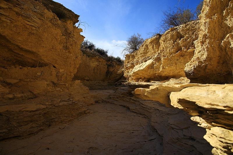 mini canyon g