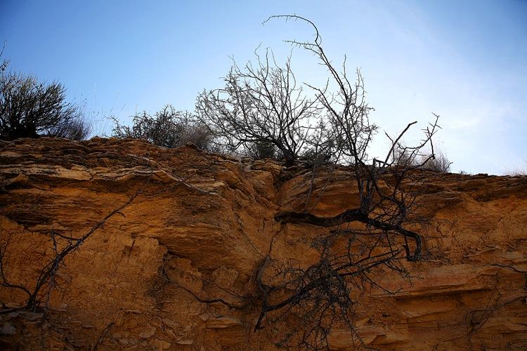 mini canyon h