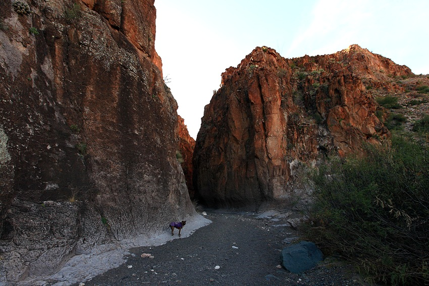 canyon e