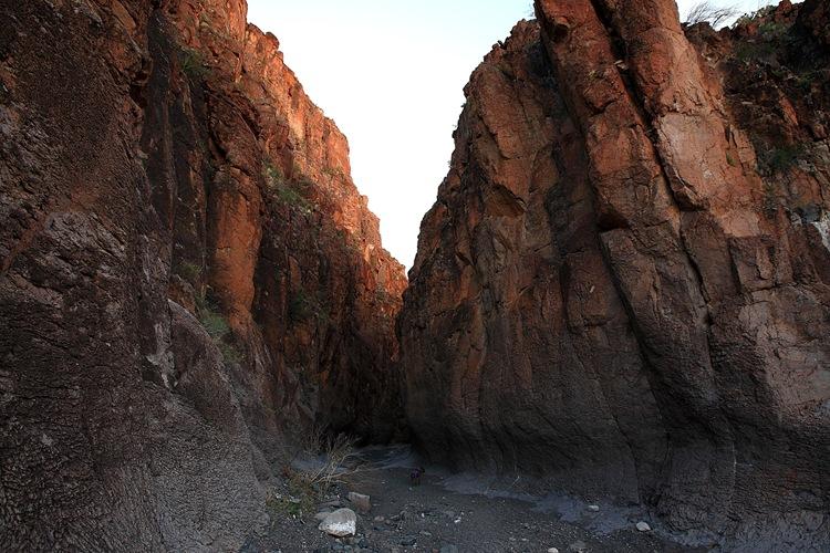 canyon f