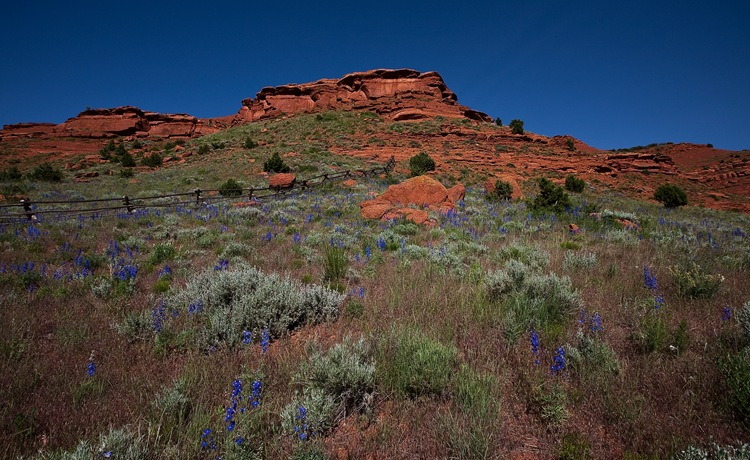 Red Canyon k