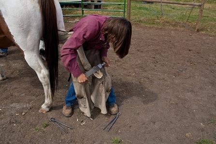 Horseshoer