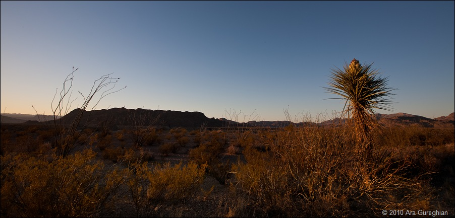 Big Bend Desert