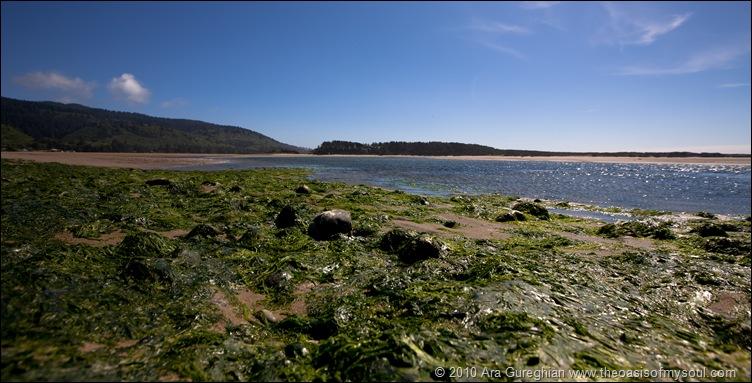 Whalen Island