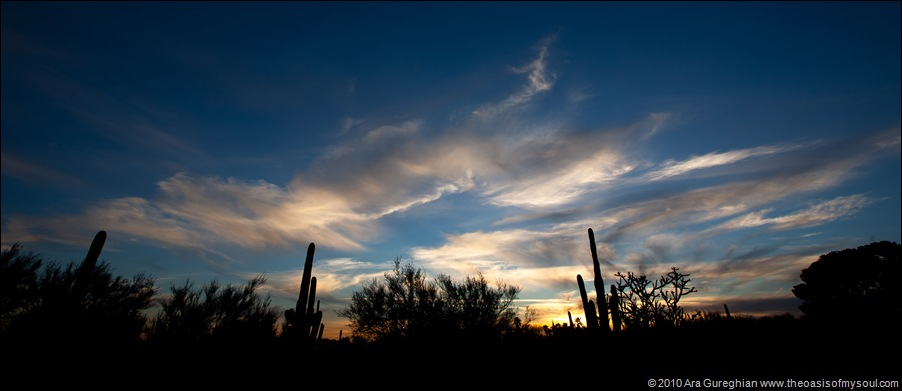 Sunset in Tucson-2