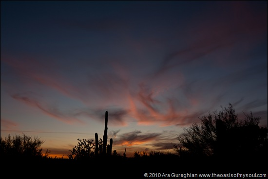 Sunset in Tucson-3