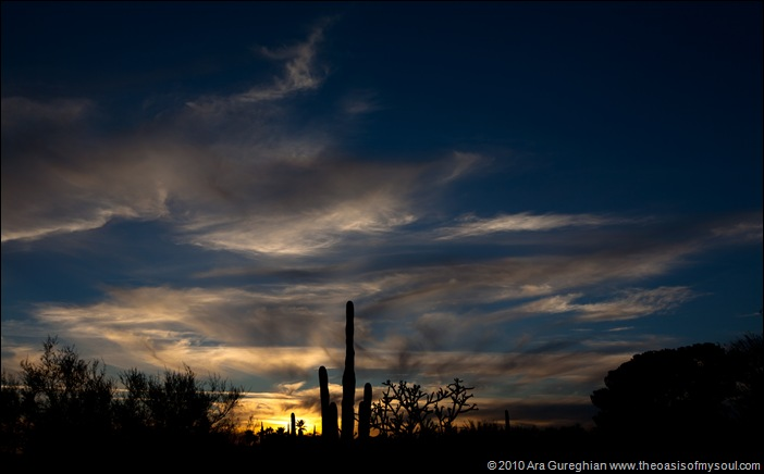 Sunset in Tucson