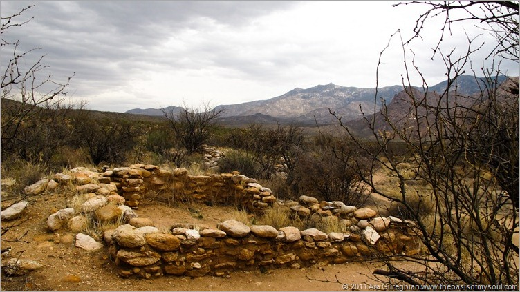 Catalina State Park-10