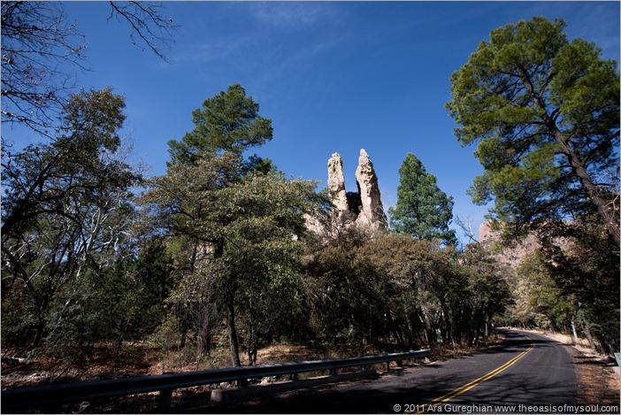 Chiricahua National Monument-13