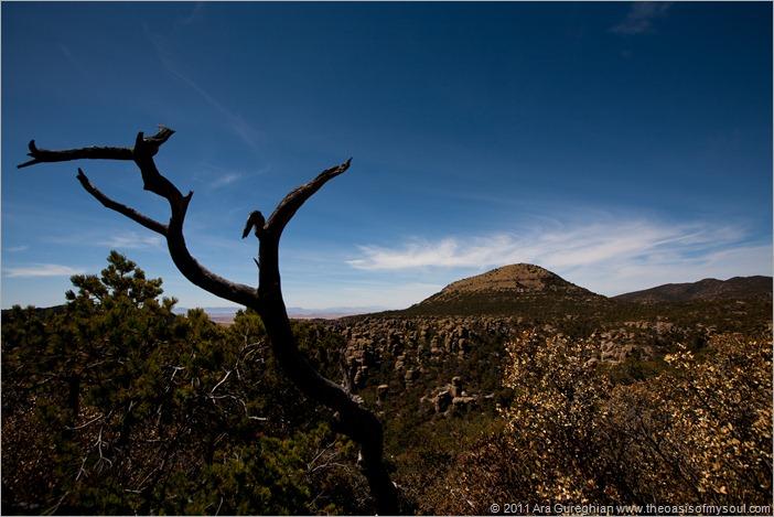 Chiricahua National Monument-2