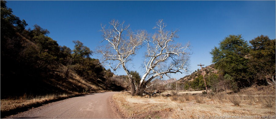 Patagonia back roads-3