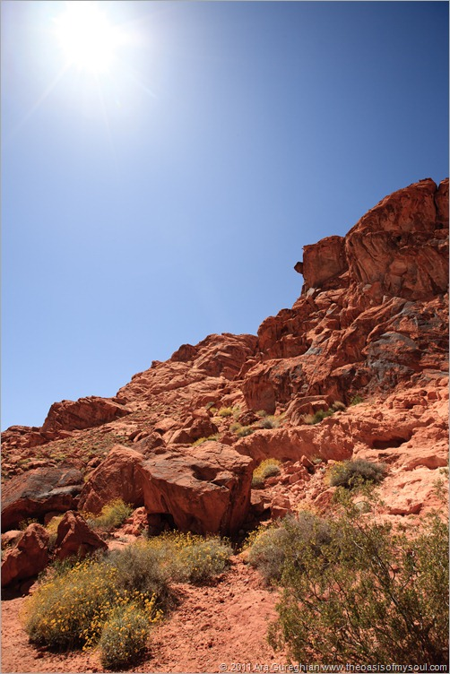 Valley of Fire-23