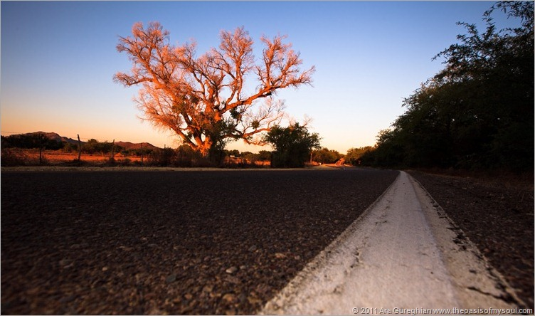 Arivaca Road-28