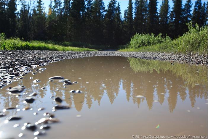 Grassy Lake Road camping-4