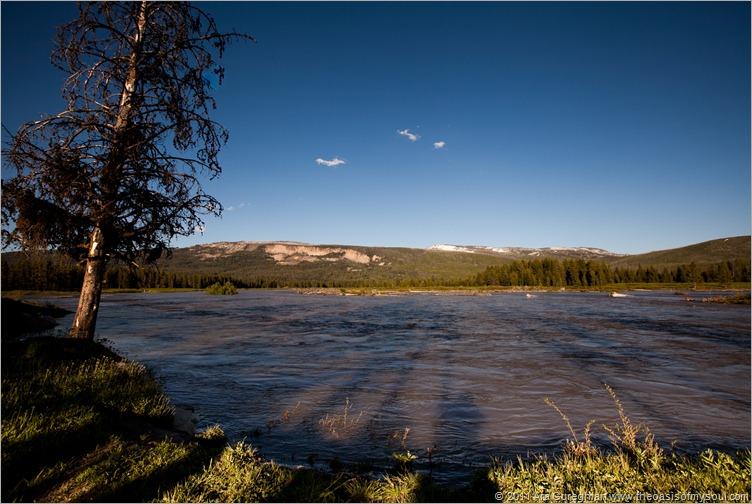 Grassy Lake Road camping-7