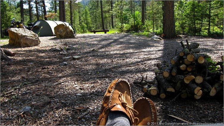 Logging Creek-13