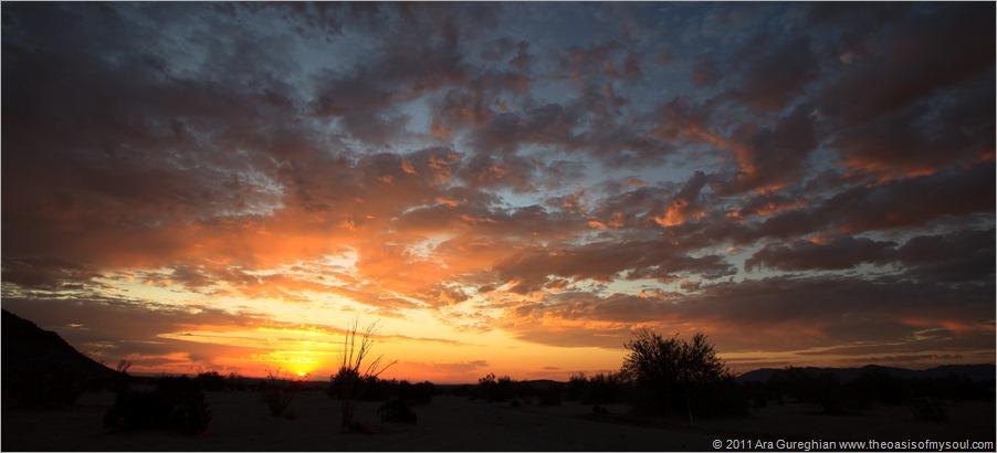 Anza Borrego Desert-14 d