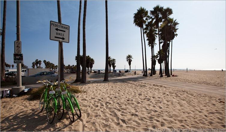 Venice Beach-6d