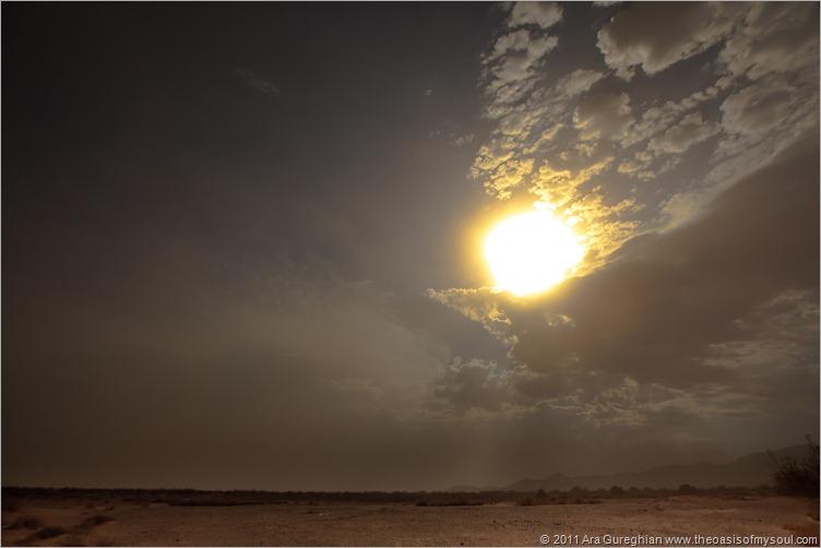 Sand storm_-4 d