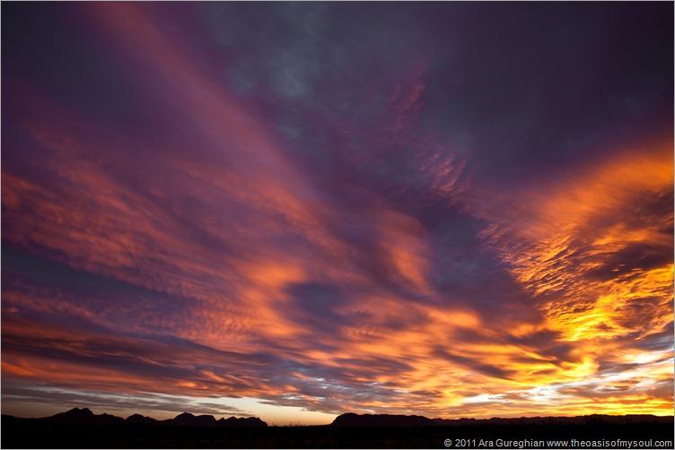 sunset-11 xxx