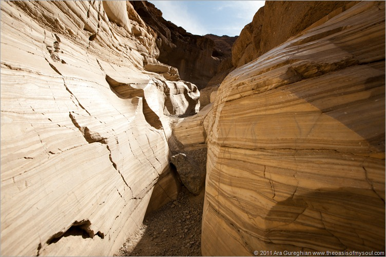 Mosaic Canyon-7 xxx