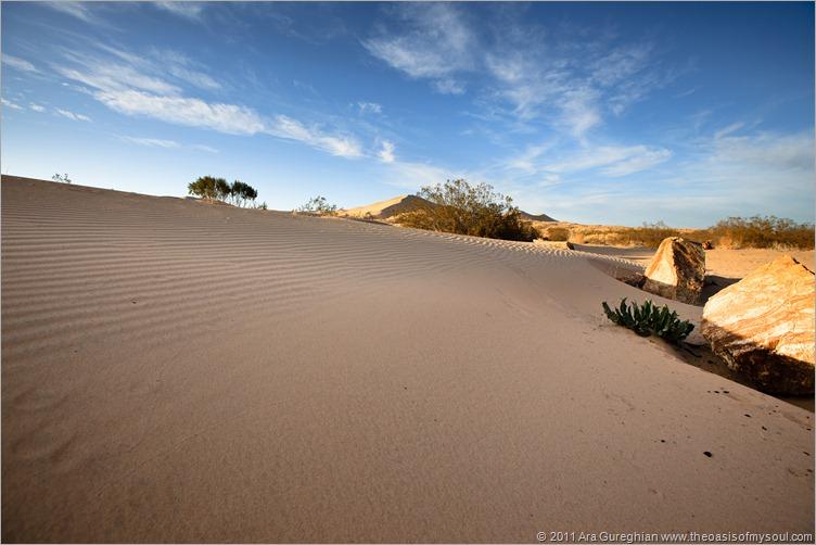 sand dunes-11 xxx