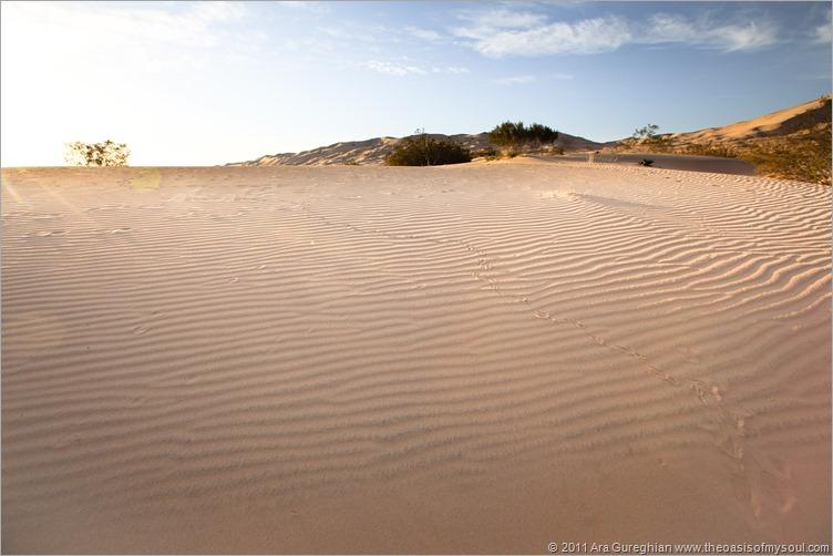 sand dunes-12 xxx