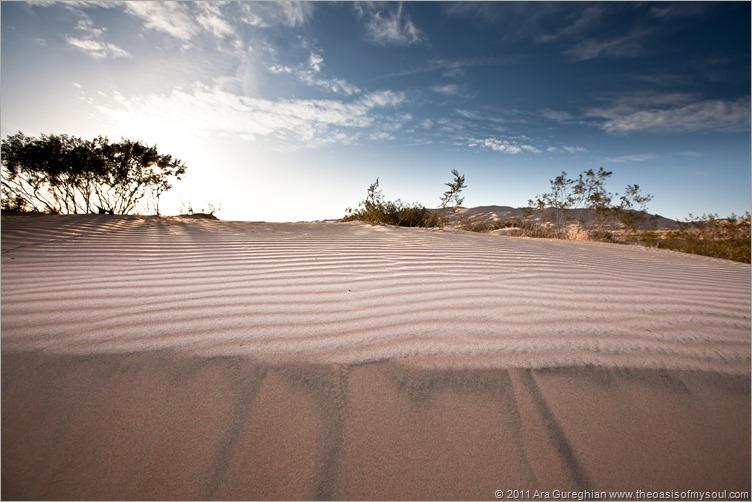 sand dunes-3 xxx