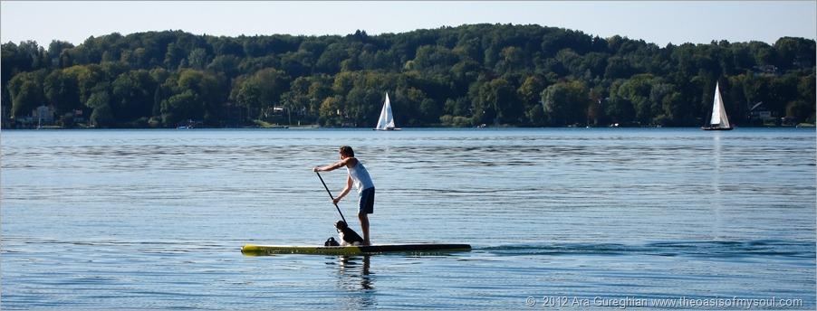 Board paddling xxx