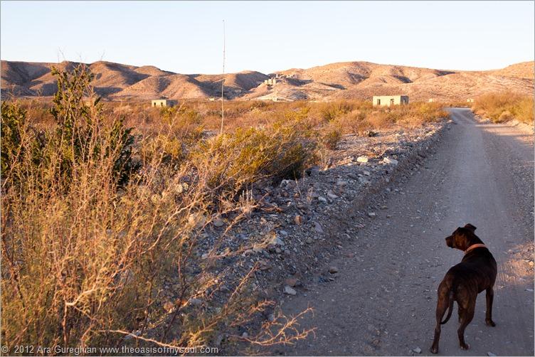 Mariscal Mines Campsite-51 xxx