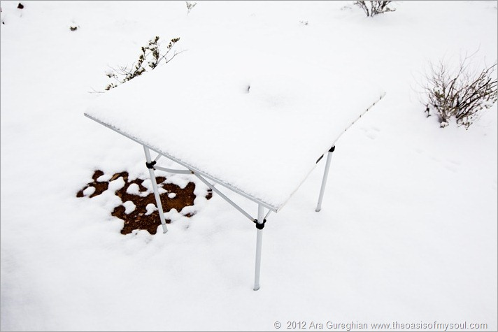Snow-30 xxx