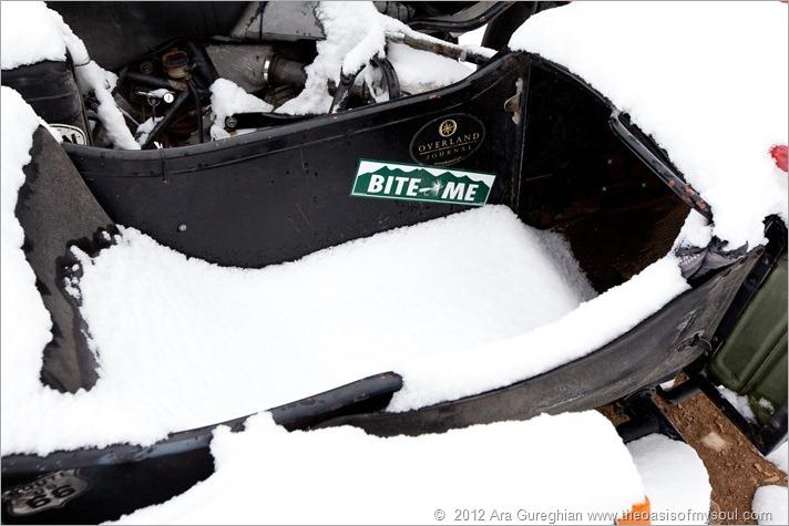 Snow-40 xxx