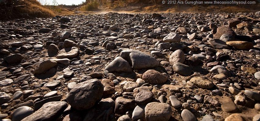 Boquillas Canyon-24