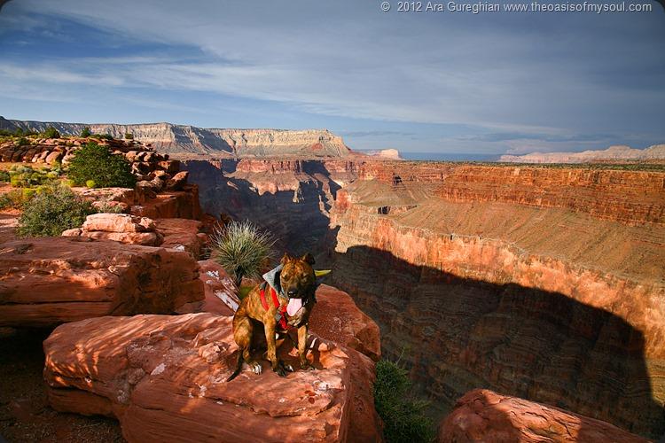 Grand Canyon-2 xxx