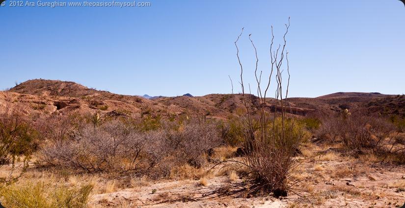 Santa Elena Canyon-17 xxx
