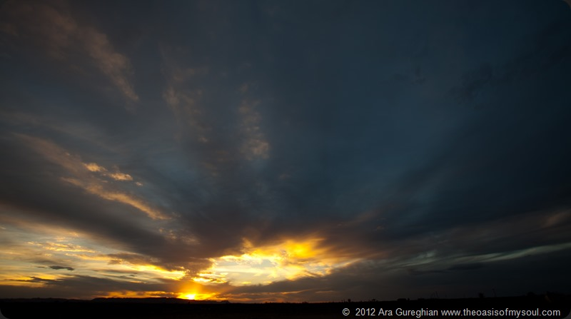 Desert Sunset xxx