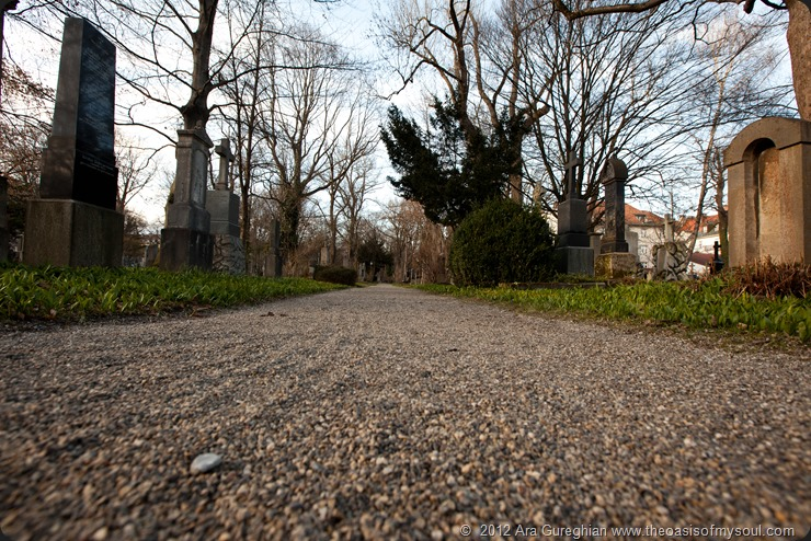 Munich Cemetery-3 xxx (2)