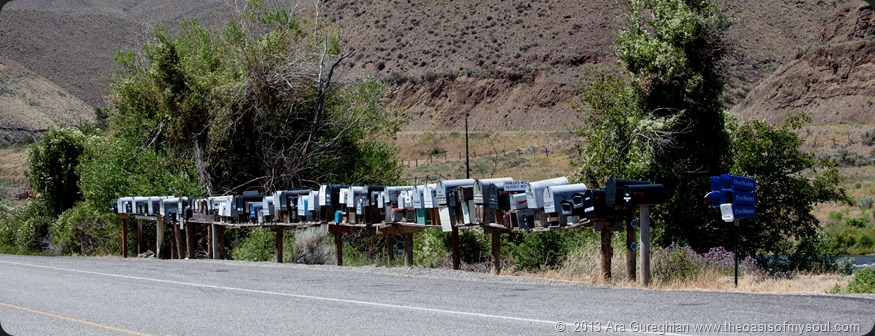 Mailboxes along the Salmon River. xxx