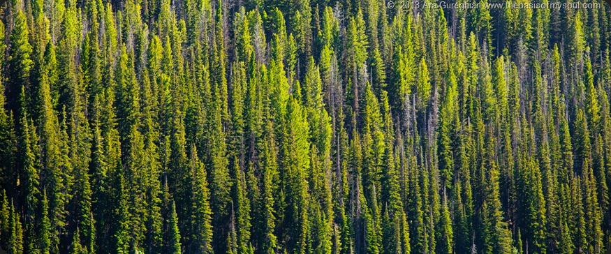 Sawtooth Mountains, Idaho.-2 xxx